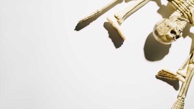 曲がった腕と脚で横たわっているスケルトン