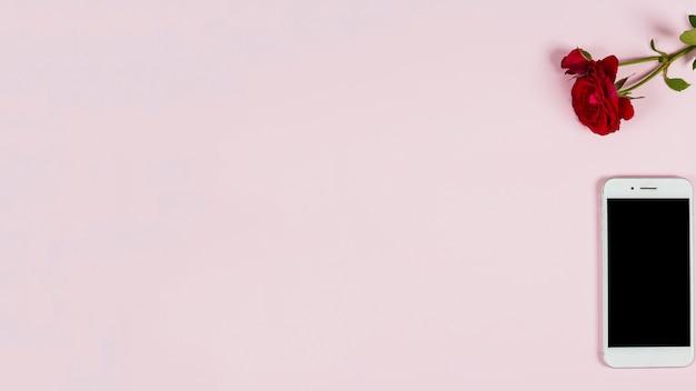 ピンクの背景に赤いバラとスマートフォンのオーバーヘッドビュー