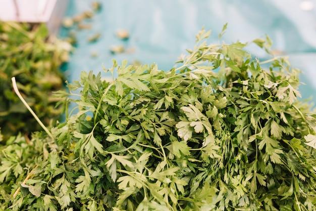 新鮮な緑のパセリのヒープ
