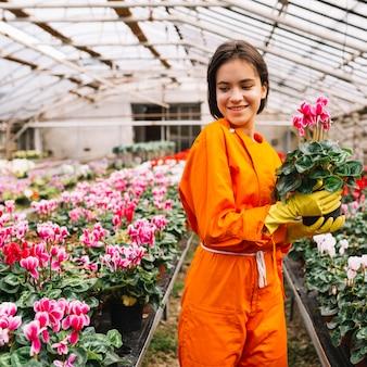 温室に立っているピンクの花の鍋と幸せな女性の庭師