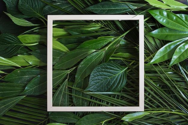 緑の葉の背景の上に木製の白いフレームの枠線