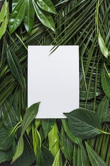 緑の葉で囲まれた空白の白いページ