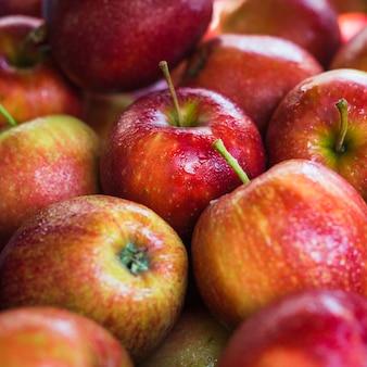 赤い熟した有機リンゴのクローズアップ