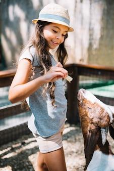 かわいい女の子が農場で山羊に食べ物を食べる