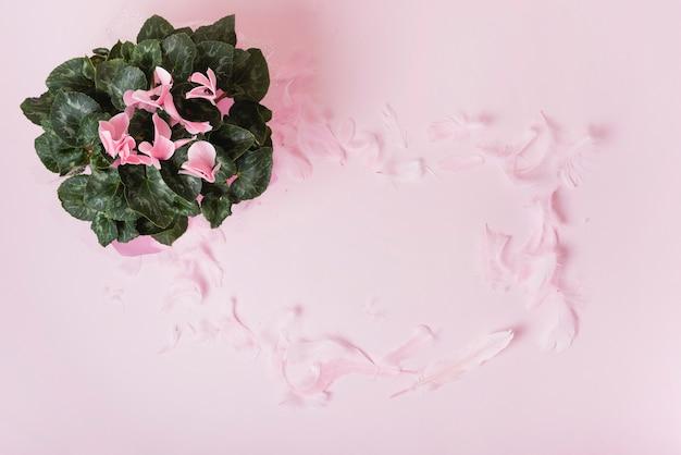 ピンクの背景に花びらのフレームと花の花束