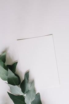 白い背景にある緑の小枝と白紙