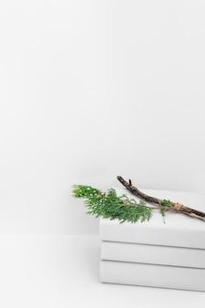白い背景の本の積み荷の上にシダーの枝
