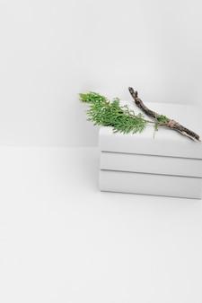 白い背景に積み重なった本の上にシダーの枝