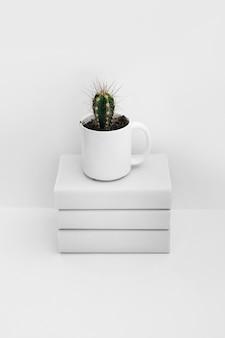 白い背景に隔離された本の上に白いマグカップのサボテン