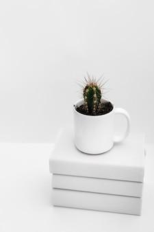 白い背景の上に積み重なった本の上に白いマグカップのサボテンの植物