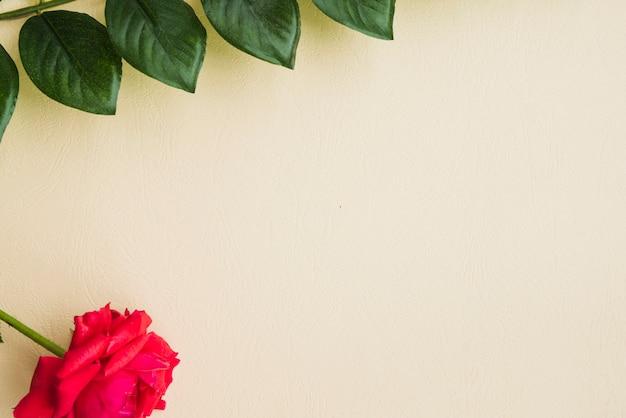 赤、ベージュの背景に緑の葉でバラ