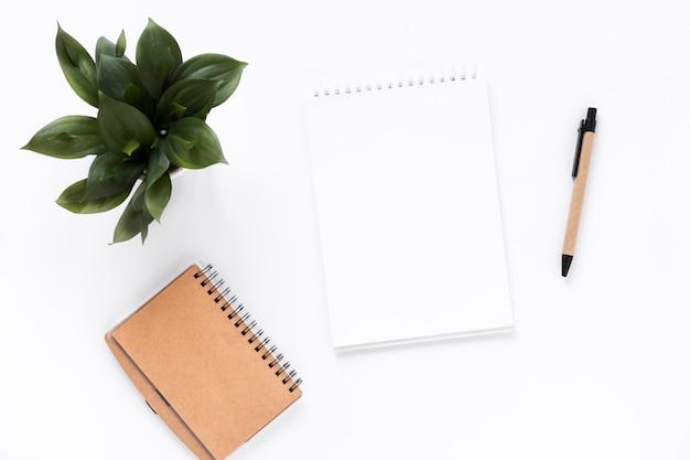 スパイラルメモ帳の高い角度のビュー;日記;鉢植えの植物と白の背景にペン