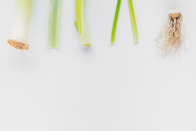 Высокий угол зрения лука-порея на белом фоне