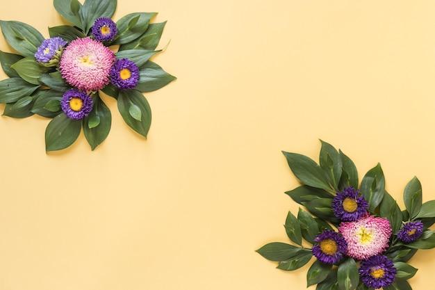 Повышенный вид красивых фиолетовых и розовых цветов на желтом фоне