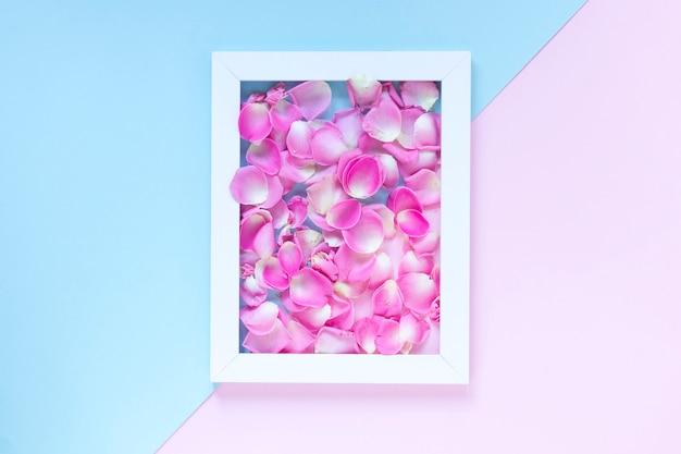 デュアルカラー背景の上にフレームのピンクの花びら