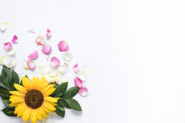 白い背景にピンクと白の花びらとひまわりの高い角度のビュー