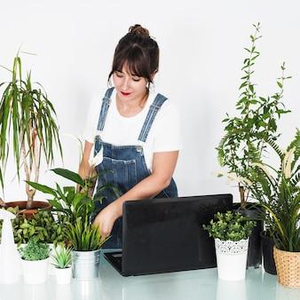 机の上にラップトップを持つ鉢植えの植物を世話する女性の花屋