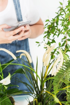 Крупный план стороны флориста, используя мобильный телефон возле растений