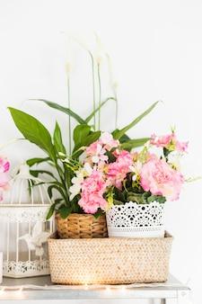 クローズアップ、美しい、花、机