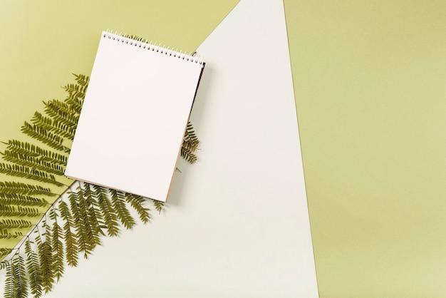 シダの枝のノート