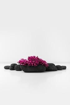 白い背景に黒いスパ石の上にピンクの花のクローズアップ