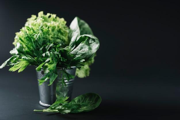 黒の背景にバケツで有機葉菜