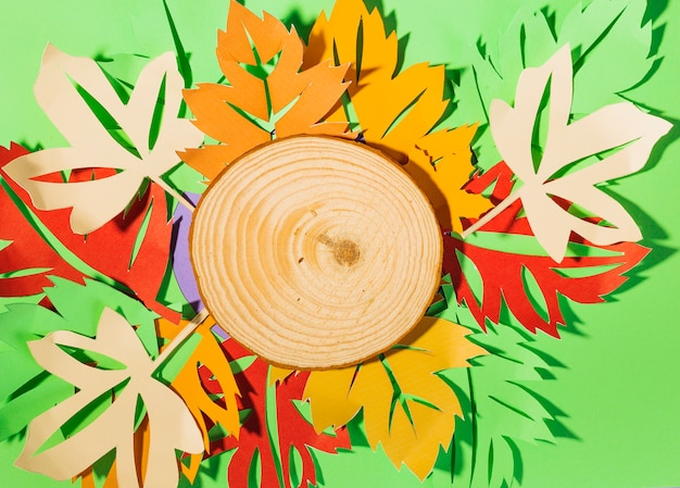 緑のテーブルに紙のリーフレットと木のスライス