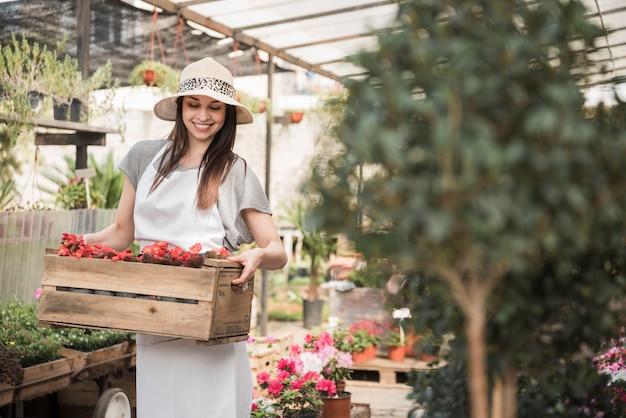 温室に立つベゴニアの花の木箱を持つ幸せな若い女性の庭師