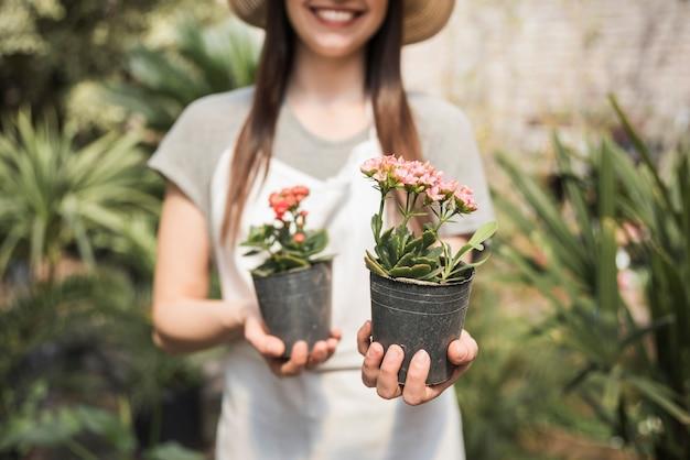 新鮮な花を持つ庭師の手のクローズアップは、植物を鉢植え