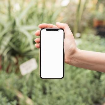 空の白いスクリーンで携帯電話を持っている女性の手のクローズアップ