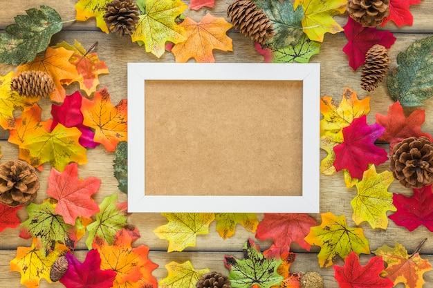 Фоторамка между листвой и корягами