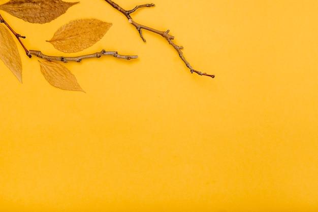 乾燥した小枝と葉