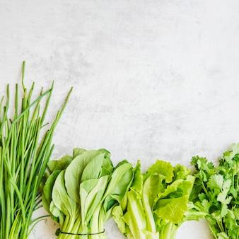 一列に並べられた様々な緑色の野菜