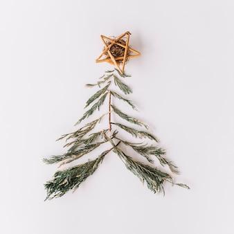 モミの木の枝から作られたクリスマスツリー
