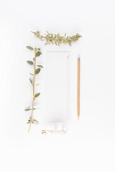 鉛筆の近くの紙と針葉樹とブッシュの小枝