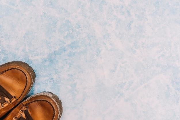 氷上の茶色の靴