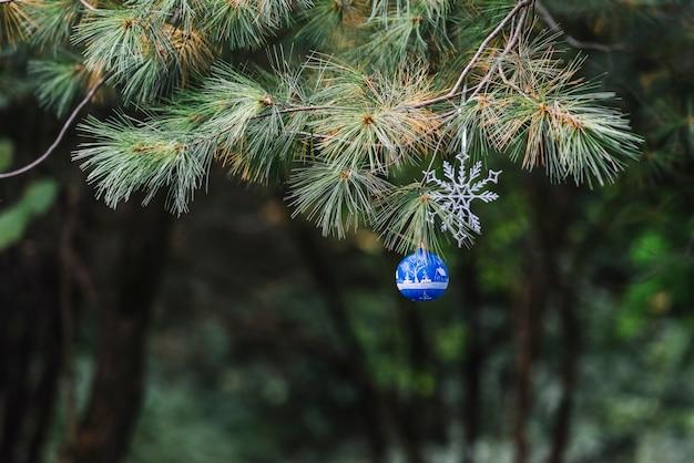 森林の針葉樹の小枝にぶら下がっているクリスマスのおもちゃ