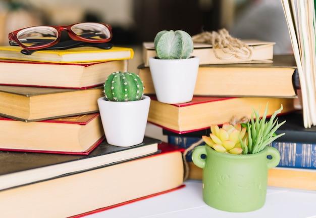 Книжная куча с кактусом