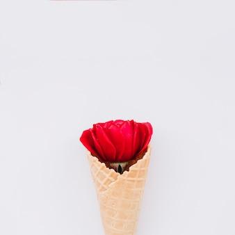 赤い花とウエハーカップ