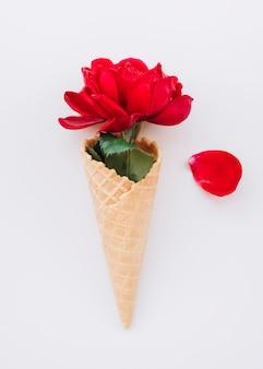 赤いブルームと花びらを持つウエハーカップ