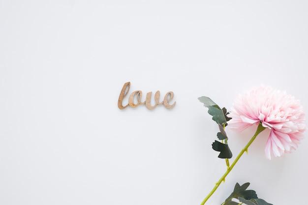 かわいい花の近くに小さな愛の書き込み