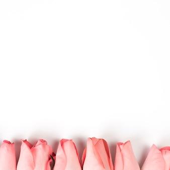 白いテーブルにピンクのバラの芽