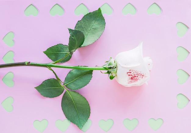 紙の上のカットの心と白いバラ支店