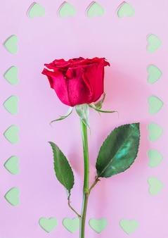 紙の上のカットの心と赤いバラ支店