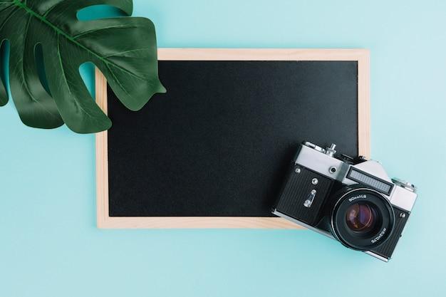 カメラと葉のある黒板