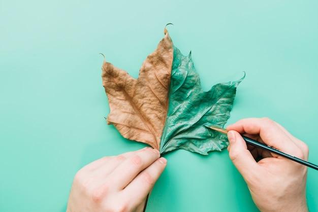 Окрашенный лист