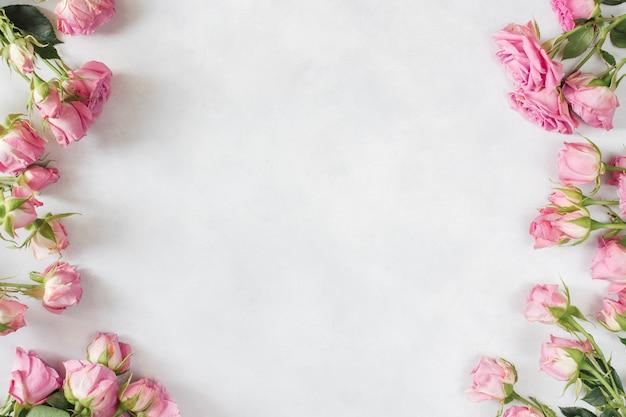Ряд свежих красивых цветов