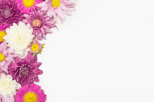 色とりどりの花の組成