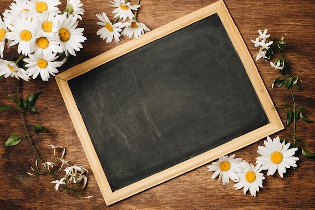 新鮮なデイジーの花の近くの黒板