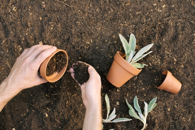 植木鉢を土で満たす人